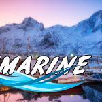 Норвегия: остров Сенья